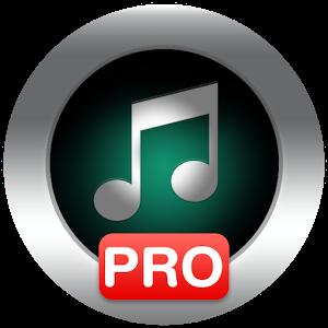 دانلود Allmusic Music Player Pro 1.21  – موزیک پلیر گرافیکی و پر امکانات اندروید