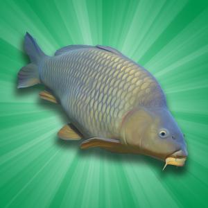 دانلود Carp Fishing Simulator 1.9.8.3 – بازی شبیه سازی ماهی گیری اندروید