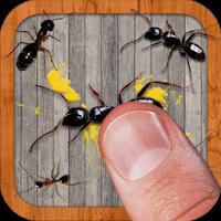 دانلود Ant Smasher 9.45 – بازی له کردن مورچه ها اندروید